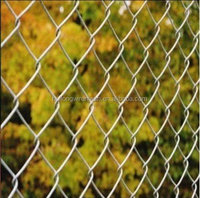 Fine Hot Dipped Galvanized Used Chain Link Fence for Sale Factory