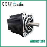 high torque brushless dc electric motor for car and boat