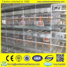 Used chicken cages,layer poultry cages,chicken house for sale
