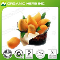 Irvingia Gabonensis Seed Extract/ African Mango Extract