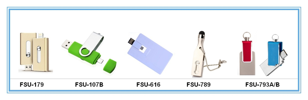 OTG USB_.JPG