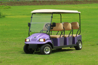 UTV/6 seater buggy/beach golf cart