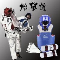 Professional taekwondo / karate body protector