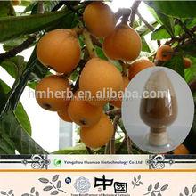 Factory supply dried hawthorn fruit, maslinic acid, hawthorn extract in bulk