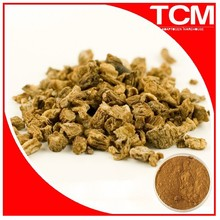 Angelica sinensis /Dong Quai root extract /Dong Quai extract ligustilide 1%