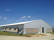 steel structure poultry building with full automatic equipment