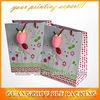 (BLF-PB332)custom mini gift bag
