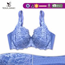 2015 Latest Popular Young Lady Transparent Bra Cup