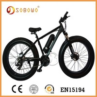 Top Qulified electric bike with LCD display EN15194