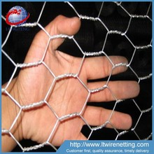 Anping Galvanized Hexagonal Wire Mesh for sale