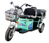 china hot sell 500w electric tricycle rickshaw for passenger