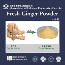 water soluble natural beverage material ginger juice powder