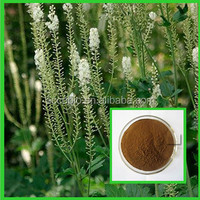 Supplier provide Hot sellings High quality Triterpenoid Saponins 8% Black Cohosh Extract