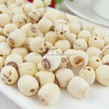 Dried White Lotus Seed Without Plumule Lotus Seeds