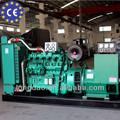 diesel de plantas de energía eléctrica del generador de energía
