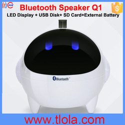 Multi-Function SD Card/USB Disk/FM Radio/Bluetooth Speaker Q1