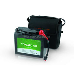 Hot Selling DC12V Battery Pack with PCM Protection