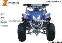 2015 new design zhejiang atv