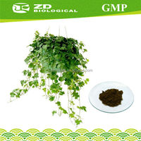 Herbal Food Supplement Ivy Extract in herbal extract