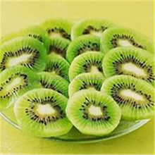 Dried fruit kiwi,dehydrated fruit kiwi,preserved kiwi fruit