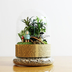 Wedding decoration landscaping plant moss bottle glass cover