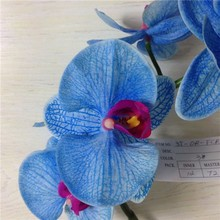 Hotel centerpiece decoration wedding blue orchid
