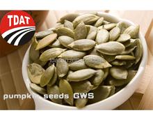 new hulled pumpkin seeds shin skin GWS snow white