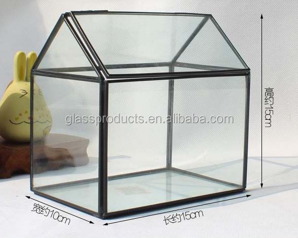 geometric-terrarium.png