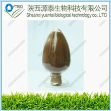 100% Pure Natural Olive Leaf Extract Hydroxytyrosol powder 10%-98%