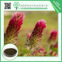 HOT selling red clover extract powder Isoflavones 40% High quality