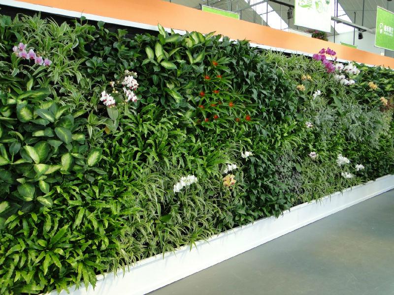 sj planta artificial de las paredes de las plantas que