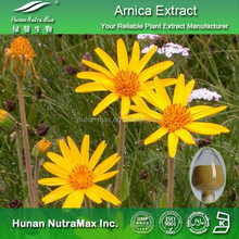 100% Natural Arnica Herbal Extract Powder 10:1 20:1