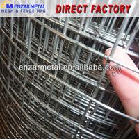 Metal Bird Cage Welded Wire Mesh Roll