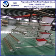 alibaba express 120 birds egg laying poultry cage /Chick Rearing Cage