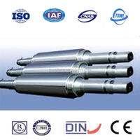 Chinese rolling mill roll