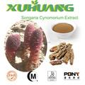 La medicina de hierbas, Reforzador del sexo, Songaria Cynomorium extracto de la hierba en polvo