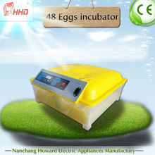 Automatic transparent fertile bird eggs for cheap fertile bird eggs