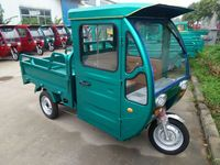 China electric/gasoline tricycle for cargo and passenger