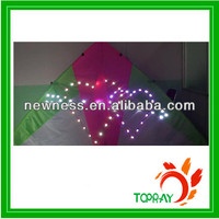 Professional led light kite with cheap price