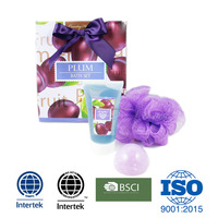 Plum Paper Bag Premium Bath gift