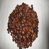 Hot-selling Factory supply Plant Chinese Honeylocust Fruit seed