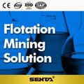 Senta Mineral beneficio proveedor de máquinas para la flotación minería