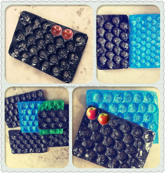 2015 New colorful plastic fruit insert tray , fruits and vegetables packing layers