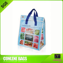 Display Large Thermal Insulated Cooler Bag