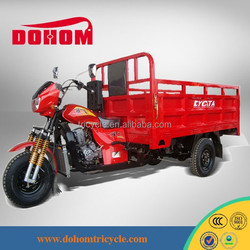 Motorised 200cc Cargo Tricycle/adult Motorcycle