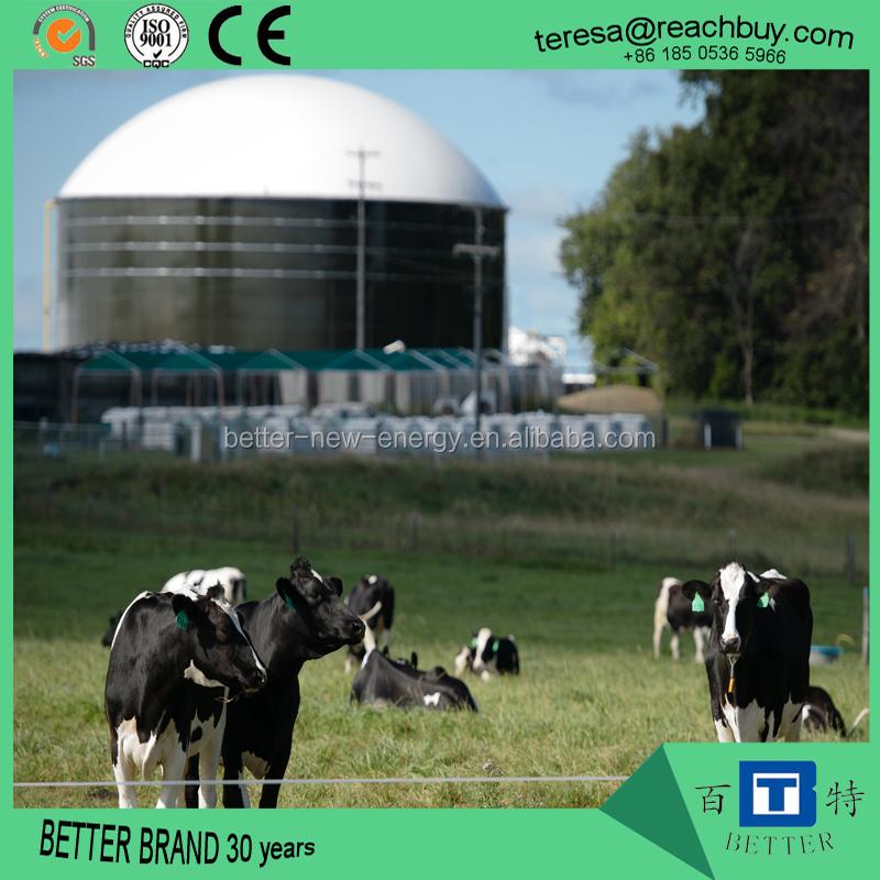 biogas anaerobic reactor