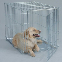 Pet Cages Type Dog Crate