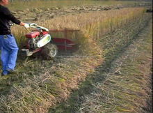 Mini Harvester Type and wheat cutting machines in harvesters 4G100