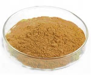 Spray Dried Hawthorn Powder