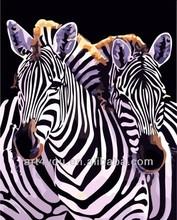 Zebra diy painting